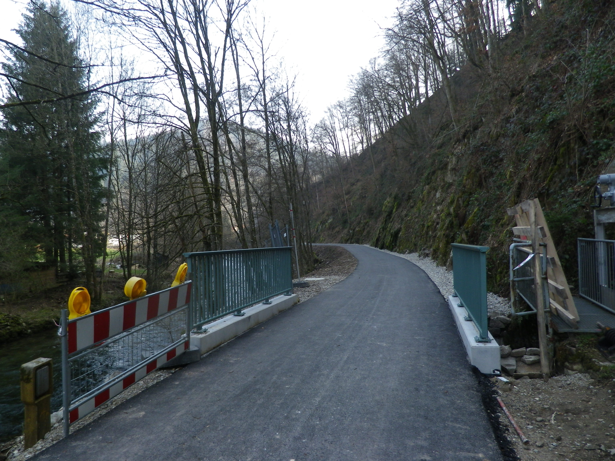 2016_neue_Brücke_Todtnauerli