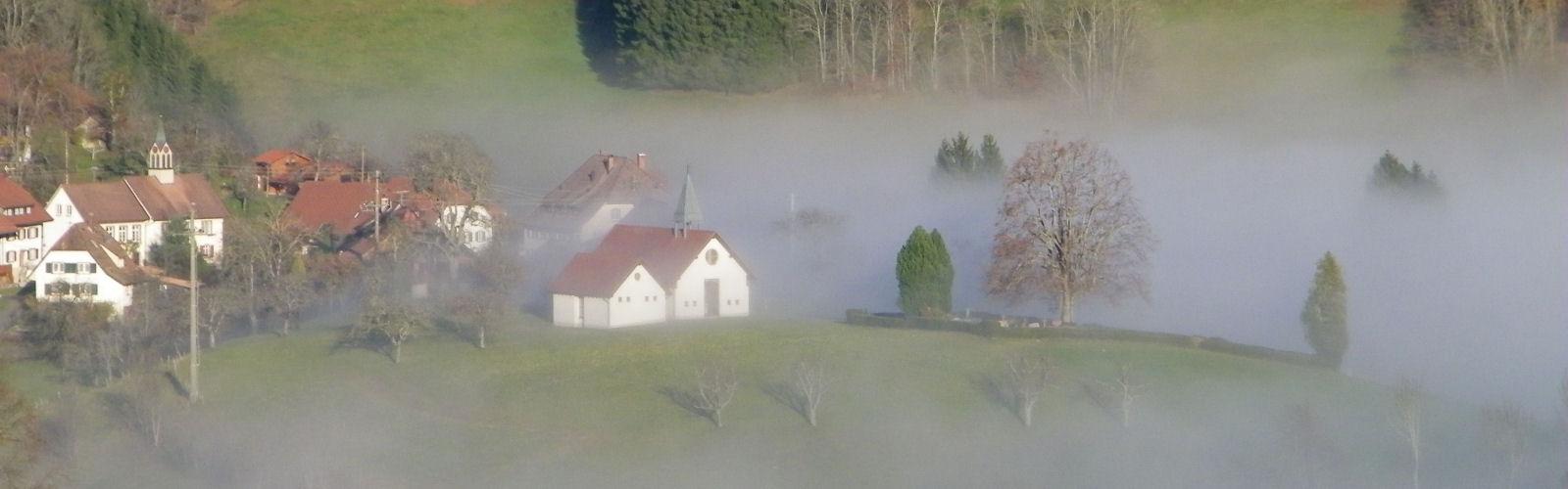 Mystischer Nebel in Ried
