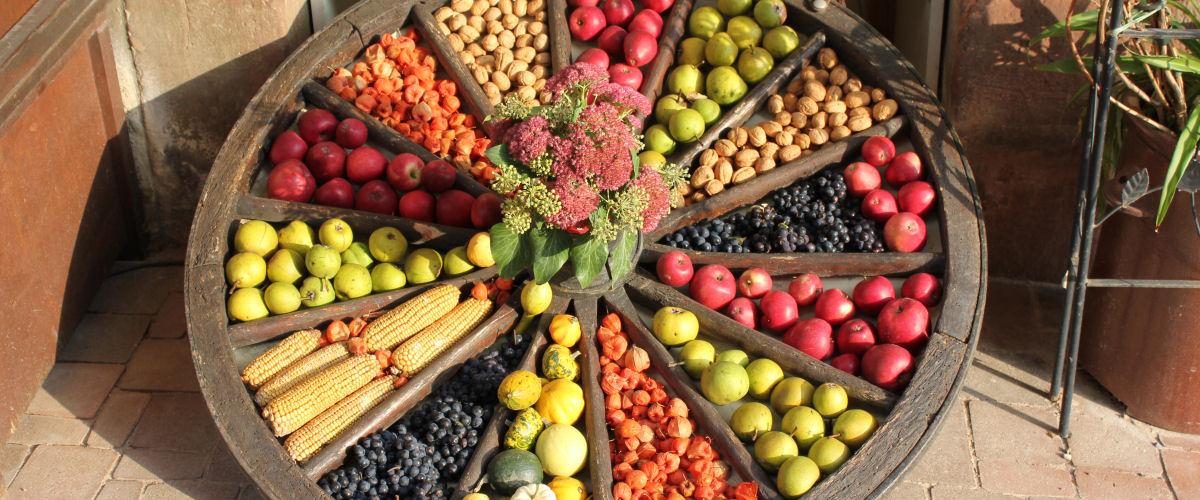 Herbst-Rad mit Obst