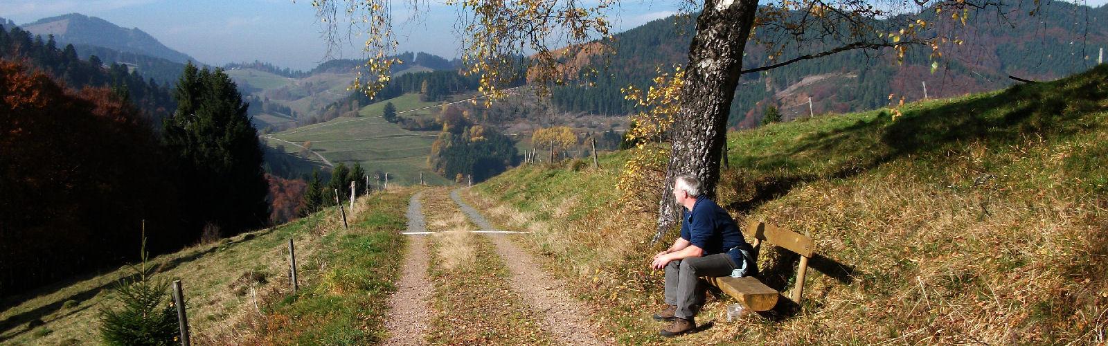 Wanderweg Hau