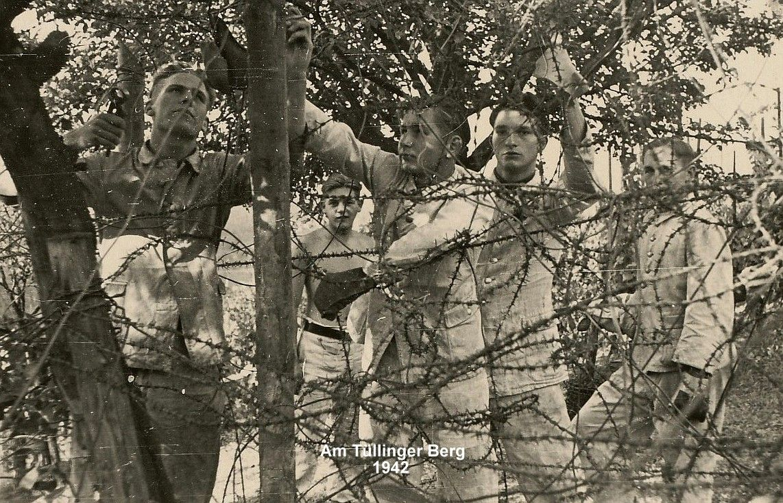Bau des Grenzzaunes auf dem Tüllinger Berg 1942 © Bestand Vetter, KrA LÖ