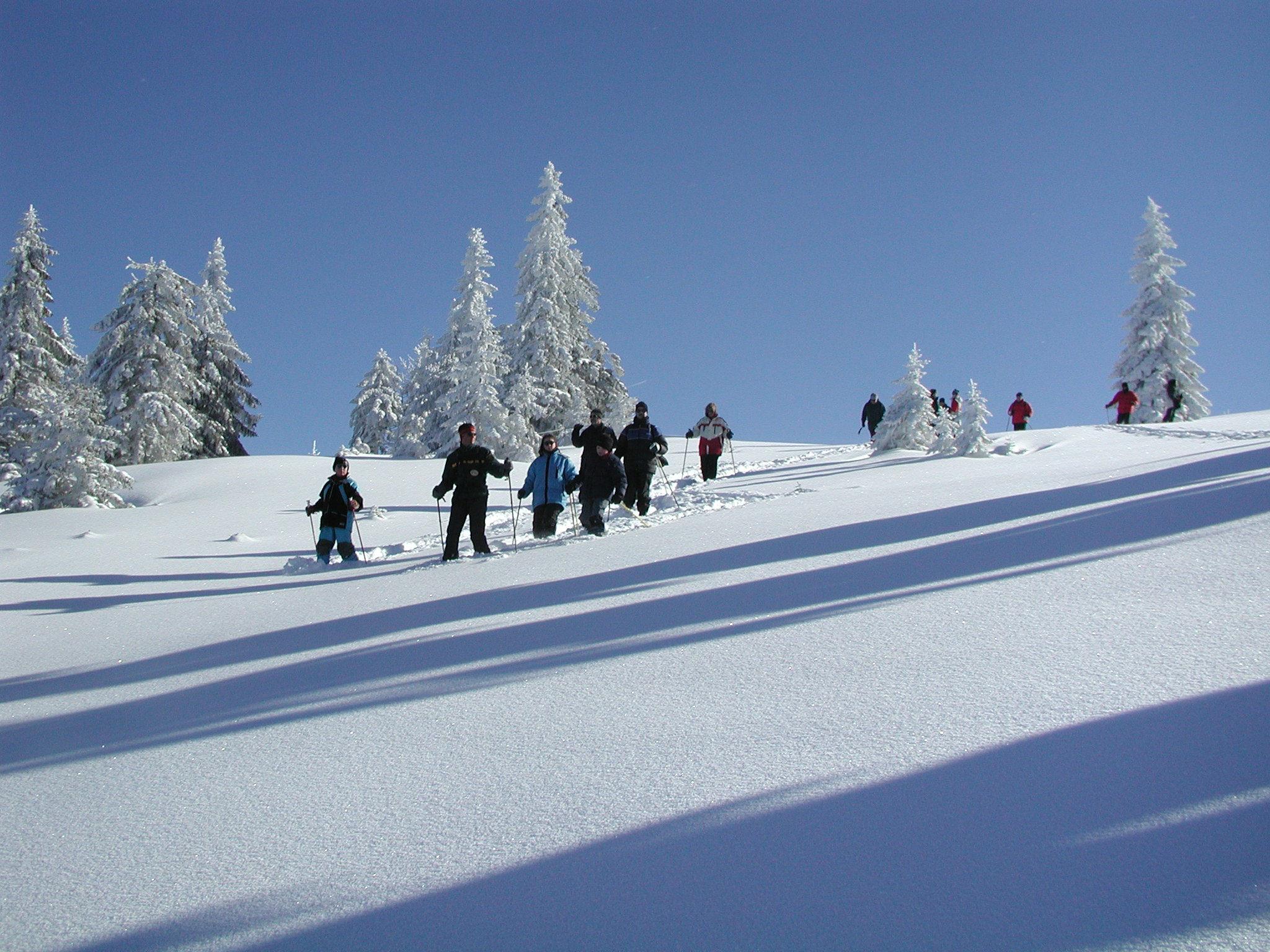 Gruppe Schneeschuhwanderer