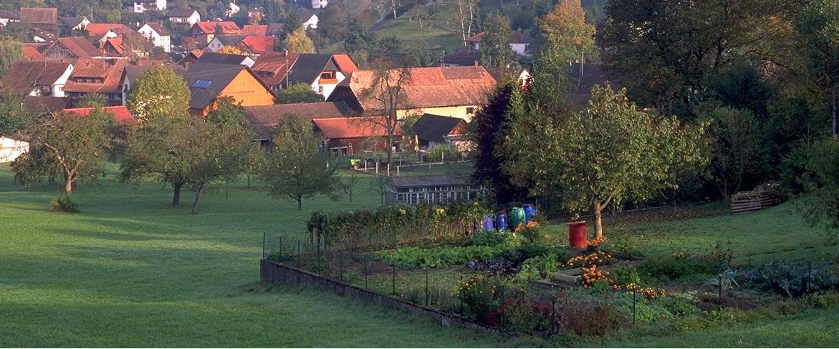 Niedereichsel, Foto: Tourismus Rheinfelden