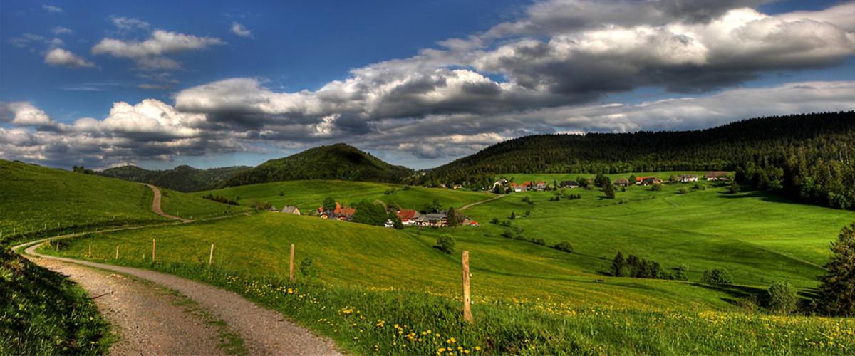 Landschaft bei Herrenschwand, Foto: Christoph Wasmer