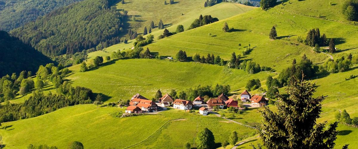 Schwarzwaldlandschaft bei Wieden, Foto: Jürgen Gocke