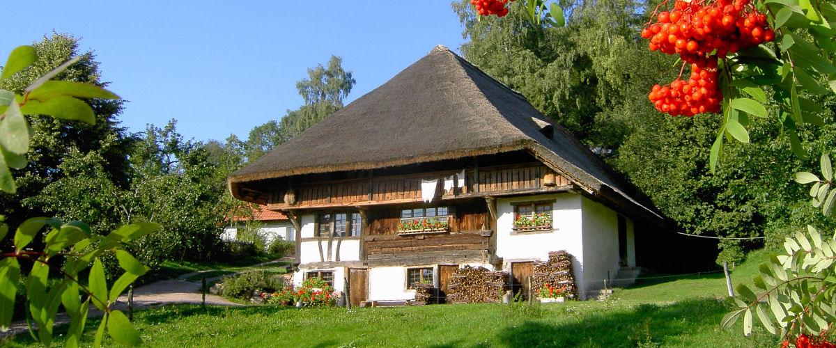 Schneiderhof in Endenburg