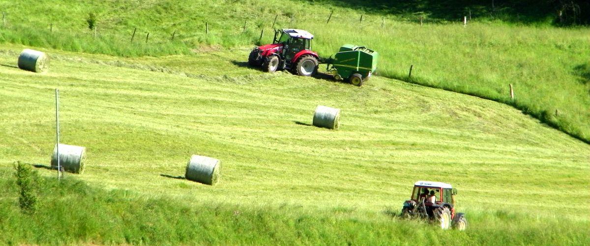 Landschaftsbild: Ein Landwirt bei der Heuernte mit einem Traktor