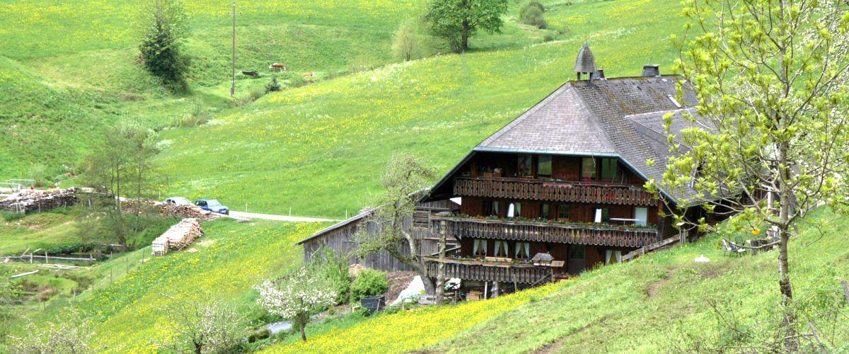 Schwarzwaldhaus in der Gemeinde Aitern