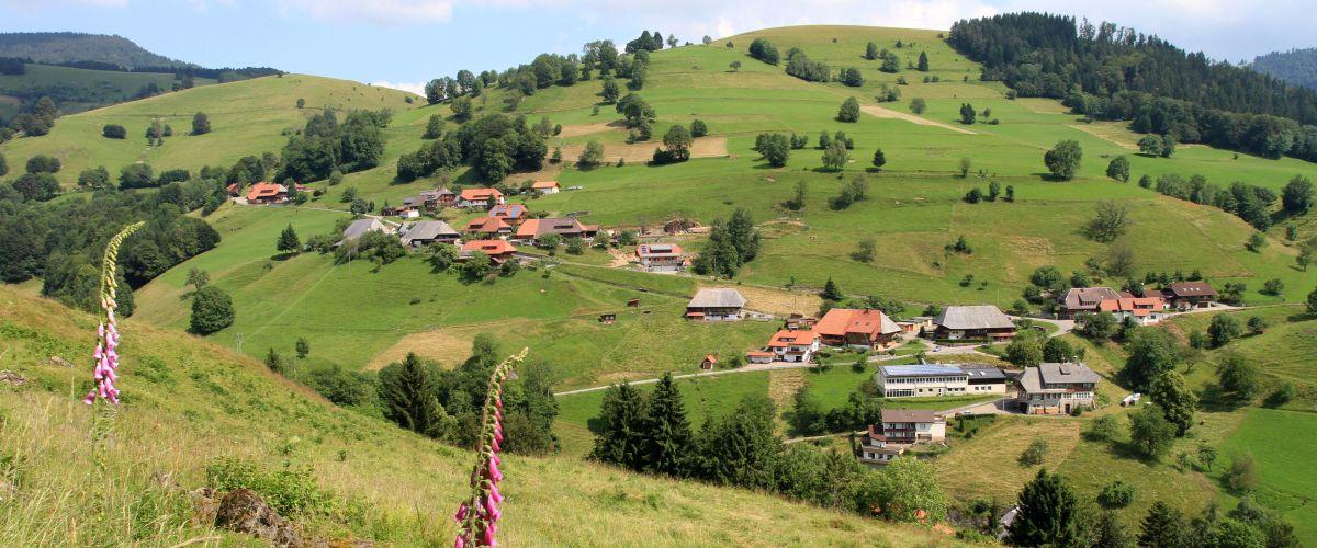 Landschaftsaufnahme der Gemeinde Aitern