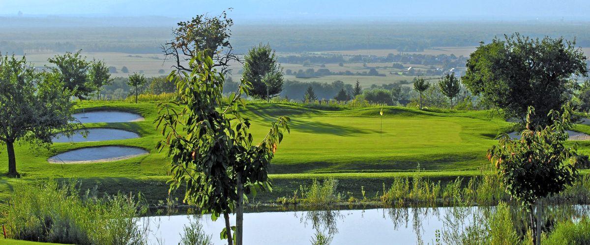 Der Golfplatz bei Bad-Bellingen mit wunderschöner Aussicht.