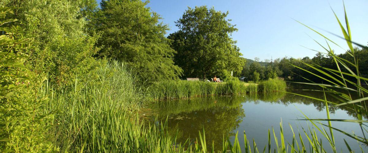 Grüttsee im Grüttpark in Lörrach