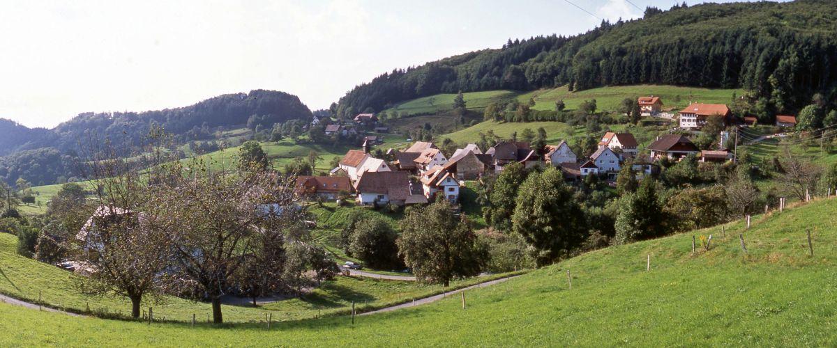 Ausblick auf den Ortsteil Vogelbach