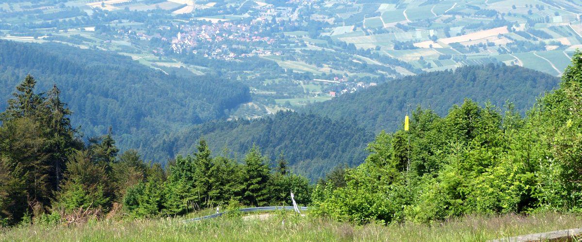 Wanderweg in Schliengen
