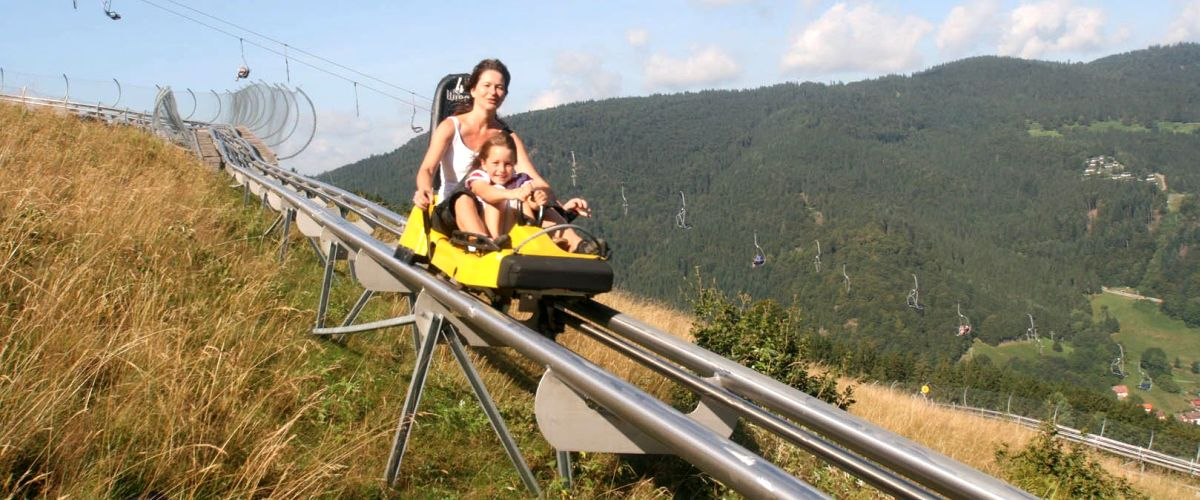 Hasenhorn Coaster in Todtnau (Rodelbahn)