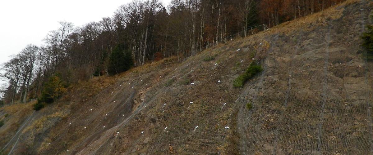 Felssicherung B 317 Feldberg