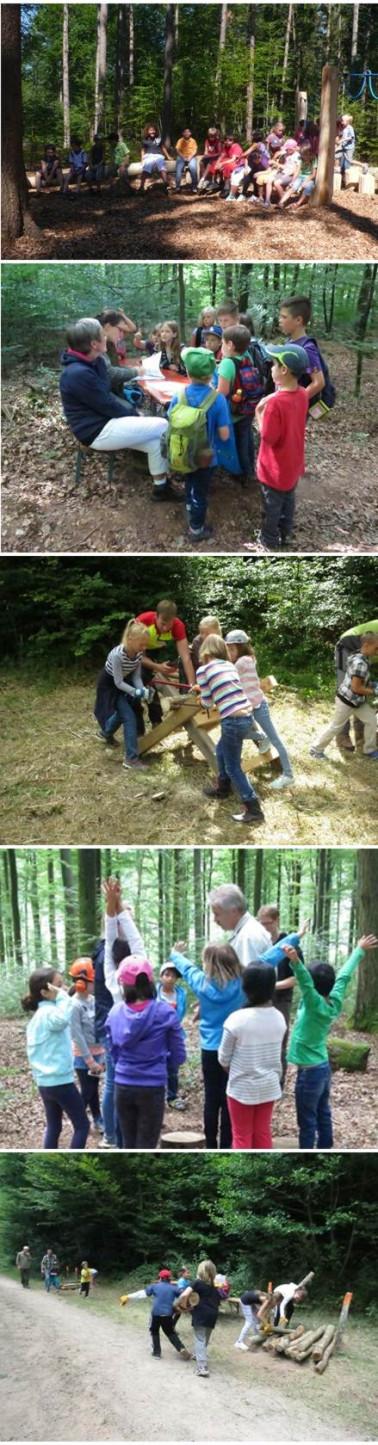 Impressionen von der Waldrallye