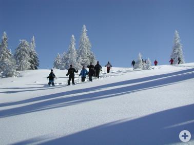 Schneeschuhwanderer am Feldberg