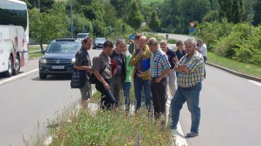 Besichtigung einer dauerhaften Wildblumenansaat auf einer Verkehrsinsel, die vormals gepflastert war