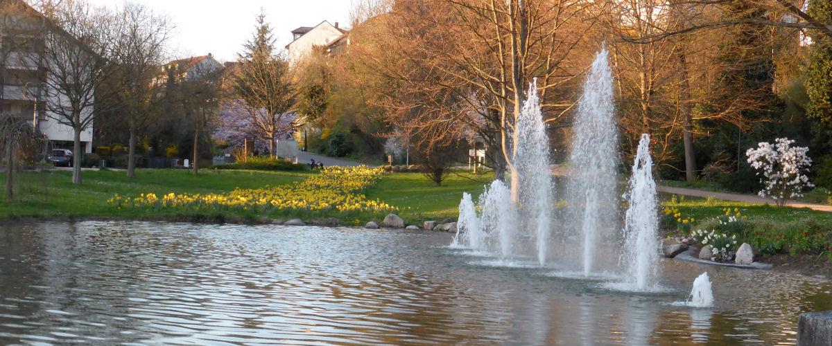 Der Kurparkweiher mit seinem Springbrunnen lädt zum Verweilen ein.