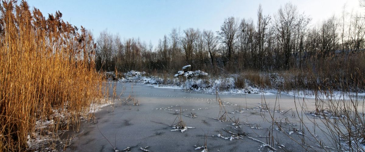 Biotop Grenzach-Wyhlen