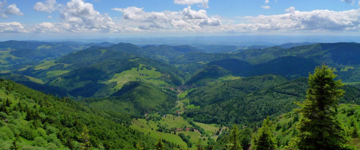 Schwarzwaldregion Belchen Blick ins Kleine Wiesental; © Matthias Kupferschmidt, Schwarzwaldregion Belchen