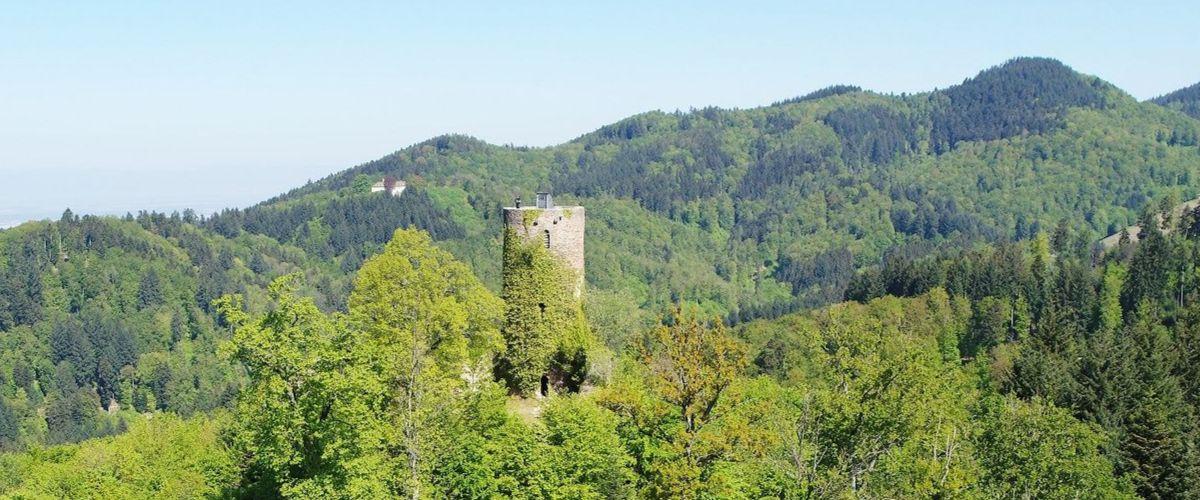 Luftbild der Sausenburg bei Kandern