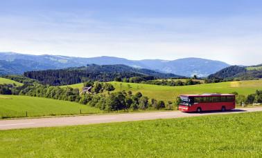 Ein Bus fährt bei Sonnenschein durch eine grüne und hügelige schöne Landschaft