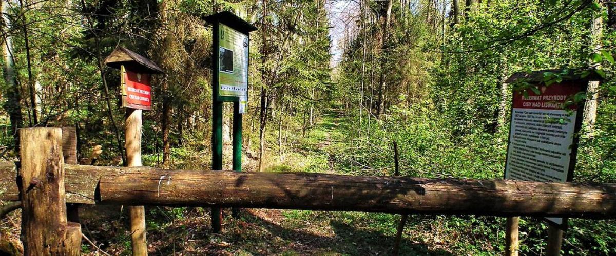 Wälder im Landkreis Lubliniec