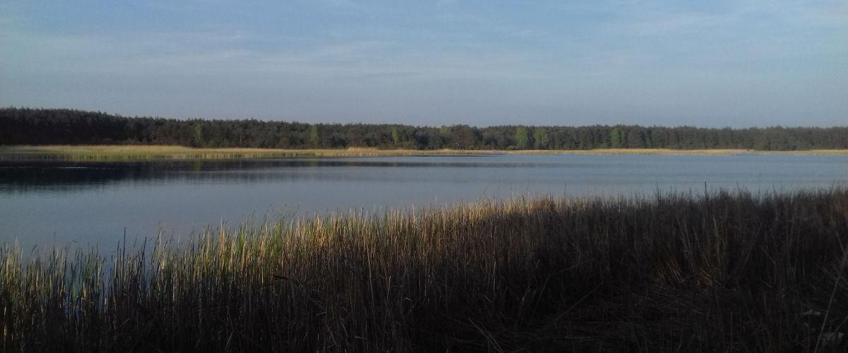 Seenplatte im Landkreis Lubliniec